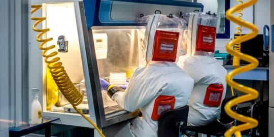Où sont les échantillons sanguins infectés par Ebola ?