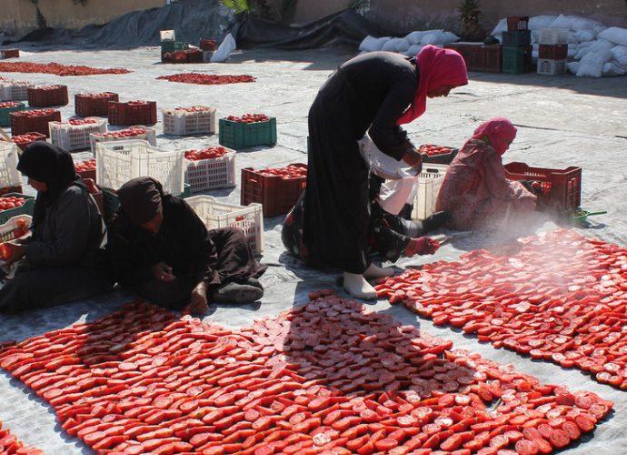 Les villes ont un rôle important à jouer dans la promotion d'une alimentation saine et durable (FAO)