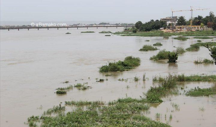 Menaces sur le fleuve Niger : Il y a péril en la demeure