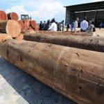 Gabon: plusieurs hauts responsables suspendus