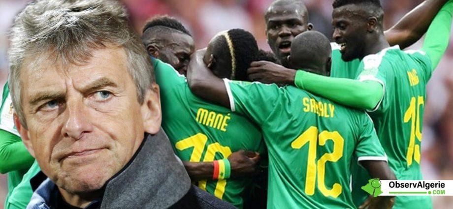Christian Gourcuff : « Le Sénégal est la meilleure équipe africaine »