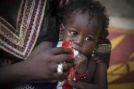KiKita : Des maires s'engagent pour intégrer la sécurité alimentaire et nutritionnelle dans les Plans de développement