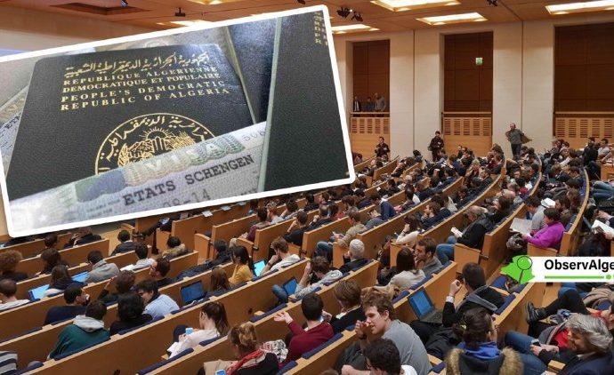 Visas d'études en France : Les étudiants algériens arrivent après les marocains