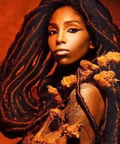 Beauté ethnique ou quand l'ethnicité doit s'appliquer à la beauté (1)