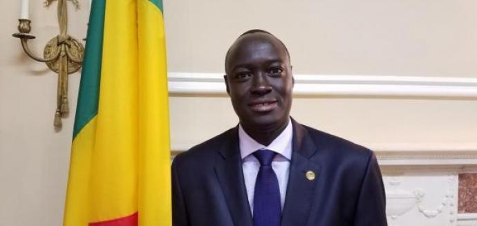 Ambassade du Mali en France : Issa Konfourou remplace Toumani Djimé Diallo