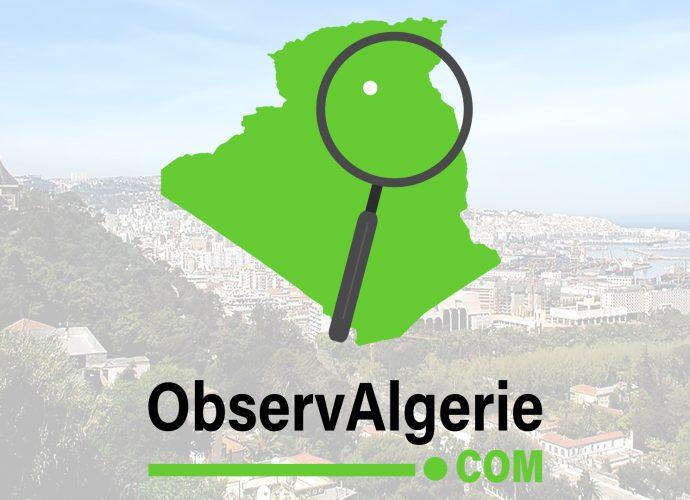 Algérie : La composition probable de Belmadi face au Mexique